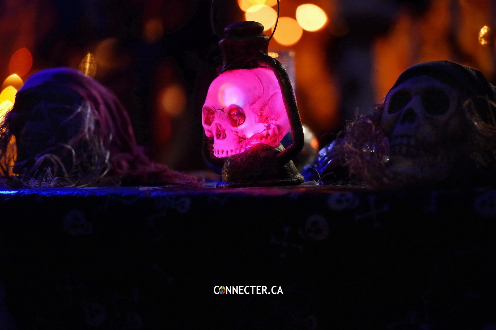 connecterca halloween gaspesie_28